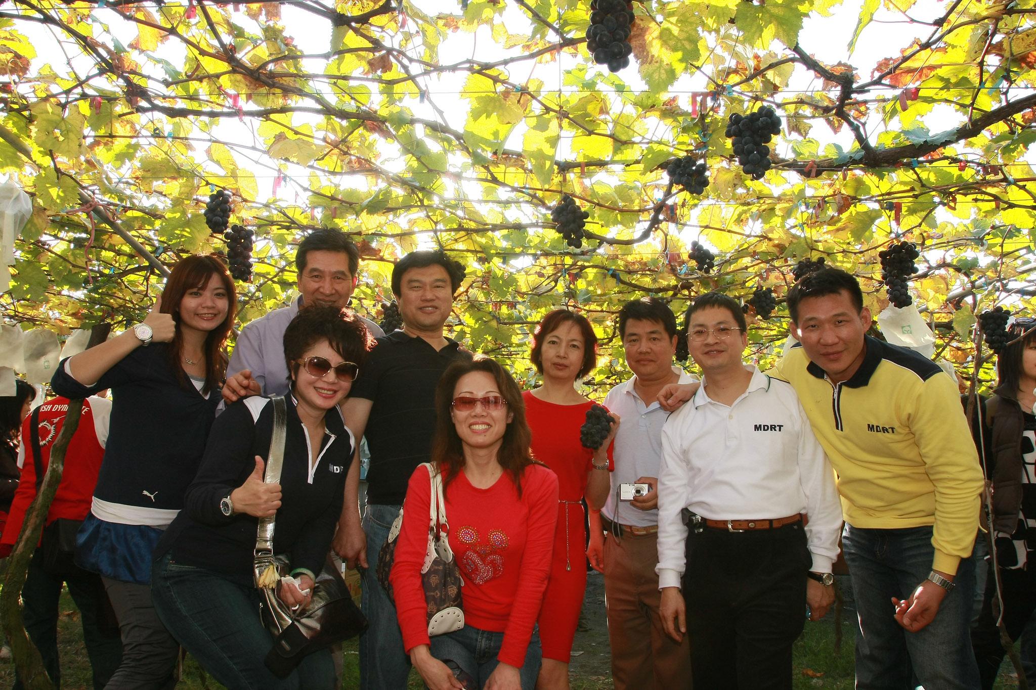 ▲永達吳文永董事長率領公司同仁前往豐丘部落進行葡萄園產地體驗。