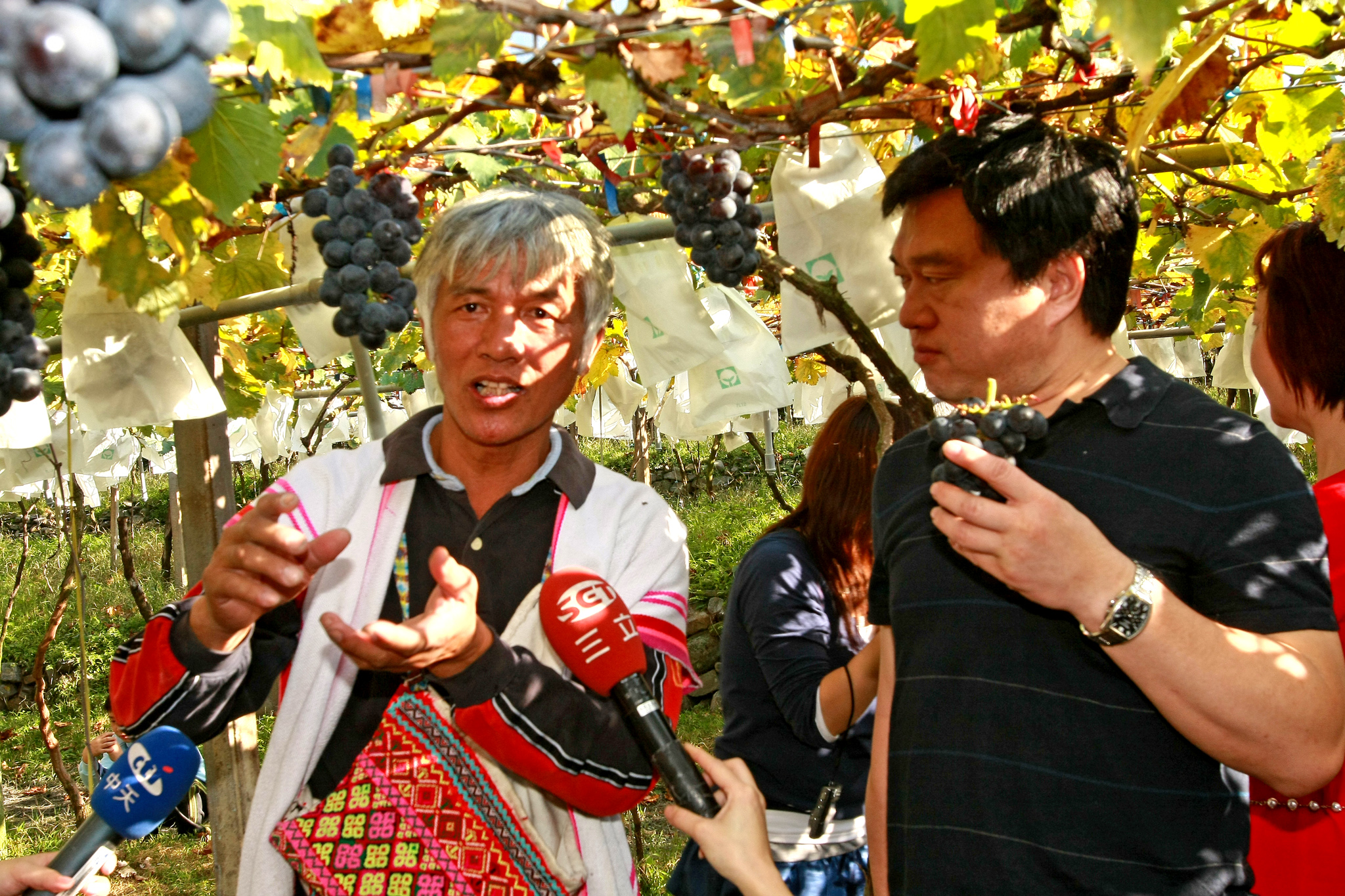 ▲「信義鄉果樹產銷班第六班」全所福班長仔細的解釋著葡萄種植的過程。