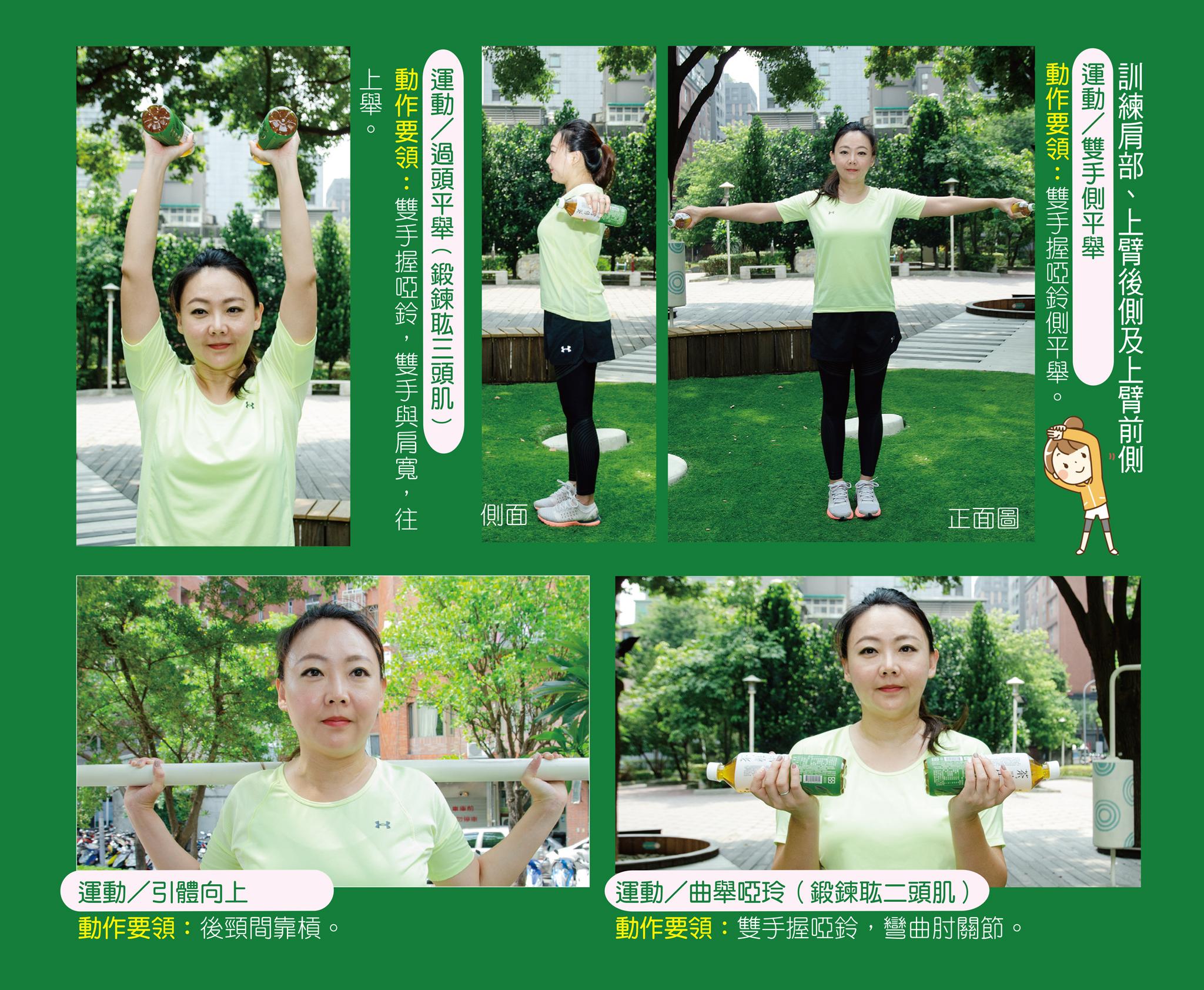 訓練肩部、上臂後側及上臂前側。